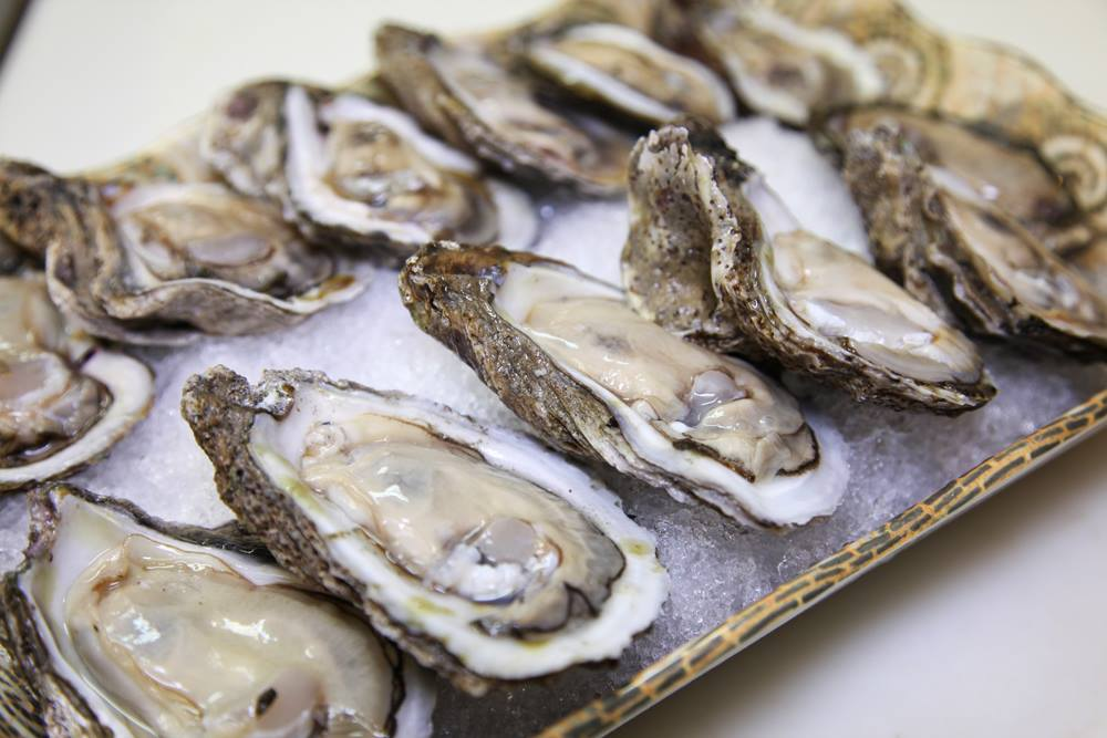 Displayed-Oysters