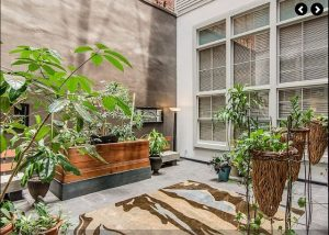 outdoor patio of melody loft vacation rental with plants